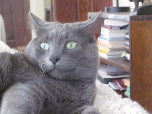 Inigo expresses concern.