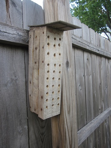 Bee House 1