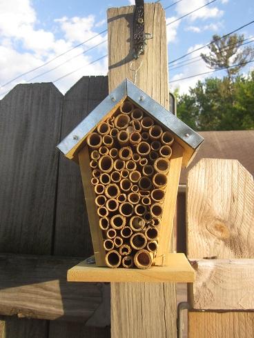 Bee House 2