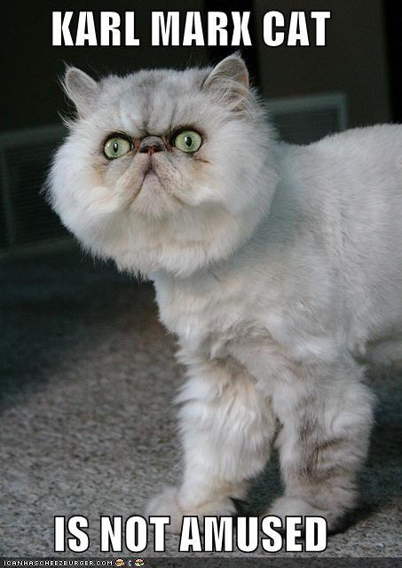 Karl Marx cat