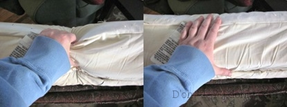 Sofa Cushion Squeeze 2