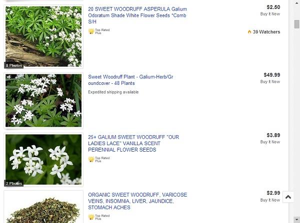 Sweet Woodruff Listings
