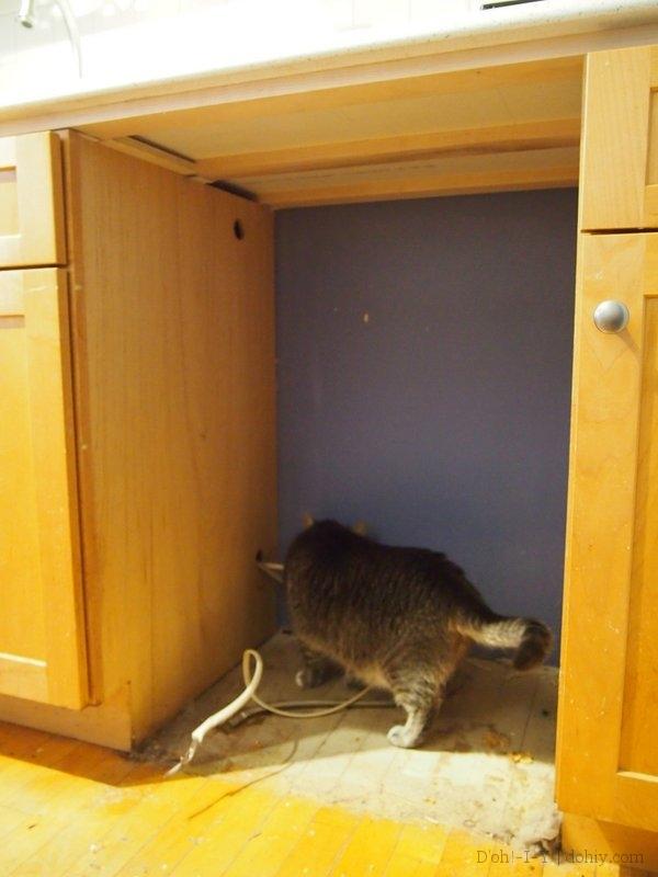 Installing a Dishwasher | D'oh!-I-Y