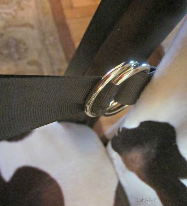 cushion tether rings